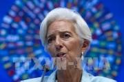 Tổng Giám đốc IMF cảnh báo hệ quả của chương trình cải cách thuế của Mỹ
