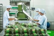 Ngân sách nhà nước hỗ trợ 70% chi phí đầu tư dự án bảo quản nông sản