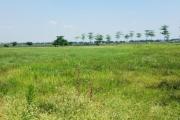 Hà Nội dự kiến thu hồi đất 1.690 dự án vào năm 2019