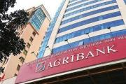 Agribank đấu giá khoản nợ xấu của Công ty cổ phần đầu tư Royal Việt Nam 'tai tiếng'