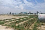 Quảng Nam: Dự án Bách Đạt Riverside rao bán rầm rộ dù chưa được giao đất?