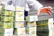 NHTM tư nhân nhận trái phiếu đặc biệt sẽ không được chia cổ tức bằng tiền mặt?