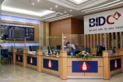 'Đem chuông đi đánh xứ người', các ngân hàng Việt đang làm ăn thế nào?